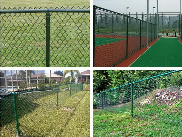 PVC-Coated-Chain-Link-Fence2